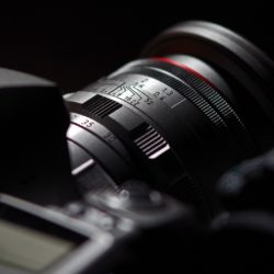 Курс «Canon / Nikon — это просто»